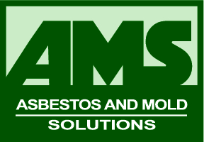 asbestos and mold solutions logo